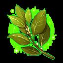 Bay Leaf (Town 1)