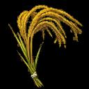 Liones Rice (Town 4)